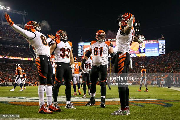 Wide receiver Mohamed Sanu of the Cincinnati Bengals celebrates with Marvin Jones Rex Burkhead and Russell Bodine after scoring a touchdown on a...