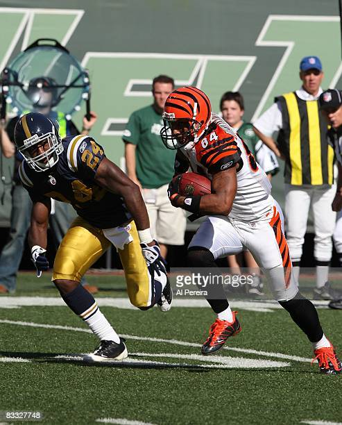 Wide Receiver TJ Houshmandzadeh of the Cincinnati Bengals has a long gain against the New York Jets when the Jets host the Bengals on October 12 2008...