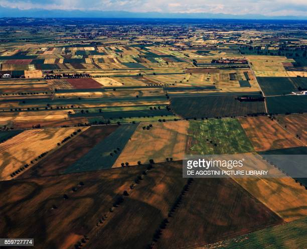Wide view of cultivated fields in the area of Piacenza EmiliaRomagna Italy