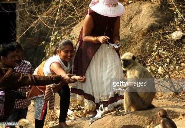 Wild baby monkeys are seen inside the Khandagiri Cave hills outskirts of the eastern Indian city BhubaneswarIndia Thursday 16 February 2017