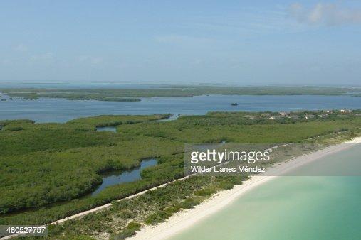 Wild beach : Stock Photo