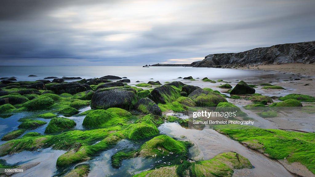Wild coast of Quiberon