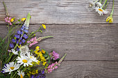 Wild flowers on old grunge wooden background (chamomile lupine dandelions thyme mint bells rape).