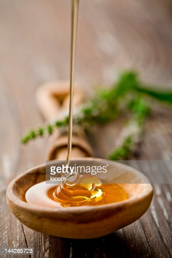 wild honey : Stock Photo