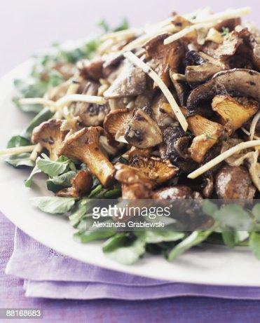 Wild mushroom salad