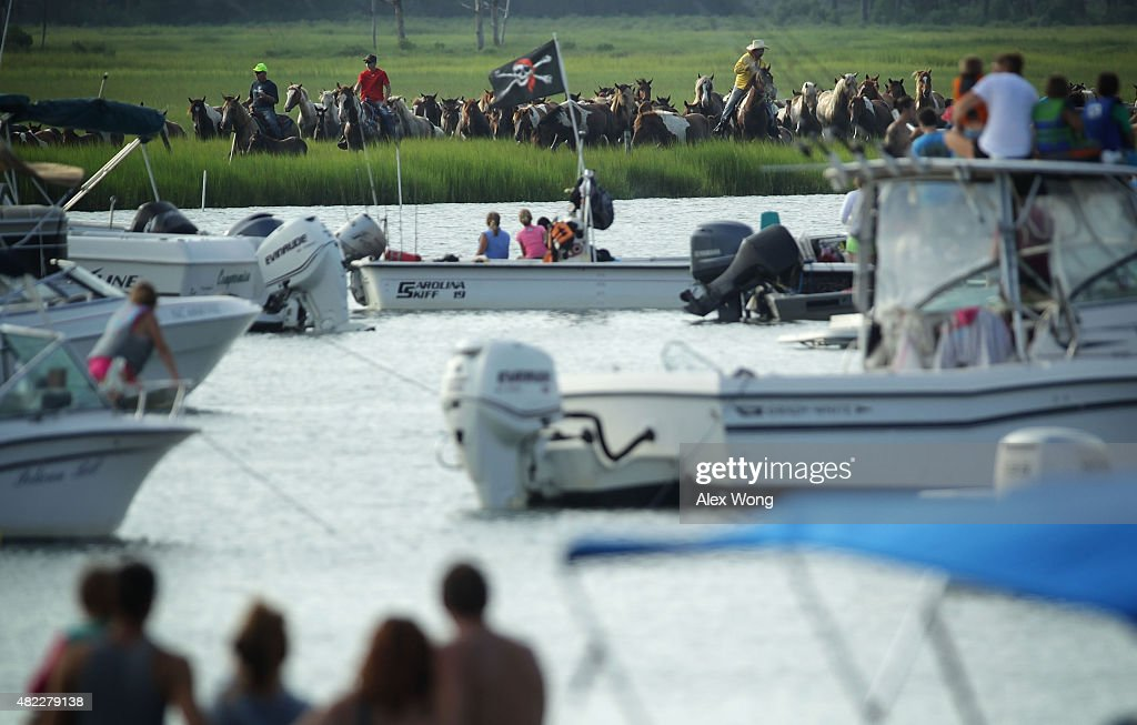 Wild ponies are about to be herded into the Assateague Channel during the annual pony swim event from Assateague Island to Chincoteague on July 29...