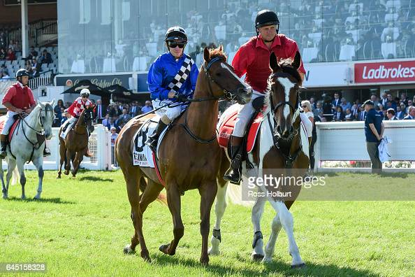 Wild Rain ridden by Stephen Baster heads to the barrier before the The Resimax Group Oakleigh Plate at Caulfield Racecourse on February 25 2017 in...