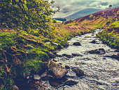 Retro Style Image Of A Fast Flowing River Through Wild Countryside In The Borders Of Scotland, UK