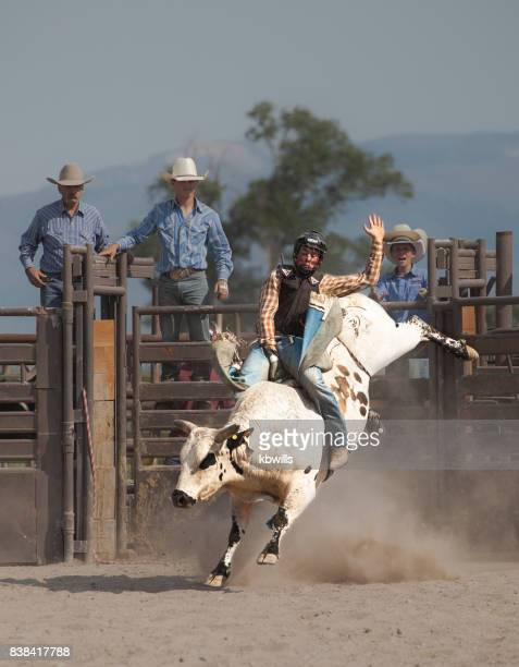wild west rodeo cowboy riding a bucking white bull