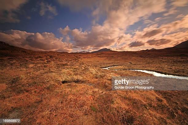 Wild Western Landscape.