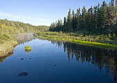 Wilderness River of the North