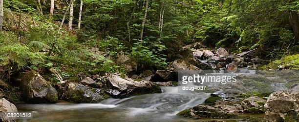 Wilderness Stream 2
