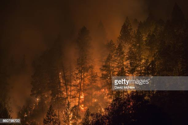Wildfire creeps through the forest down the south side of Dry Creek Canyon at the Partrick Fire on October 12 2017 west of Napa California Thousands...