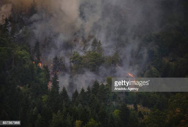 A wildfire is seen in Daba and Tsagveri villages of Tbilisi's Borjomi Valley Georgia on August 22 2017 Turkey sent two helicopters to help to...