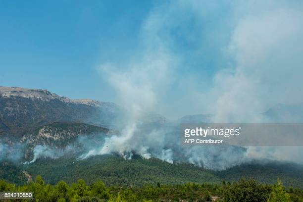 A wildfire rages near Yeste in south eastern Spain on July 28 2017 Fires ravaged bone dry pine forests and is still not under control despite the...