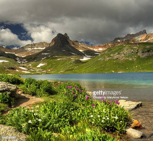 Wildflowers and Ice Lake Panorama