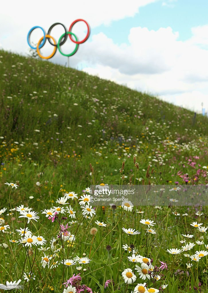 Wildflowers are seen in bloom at Olympic Park on July 21, 2012 in London, England.