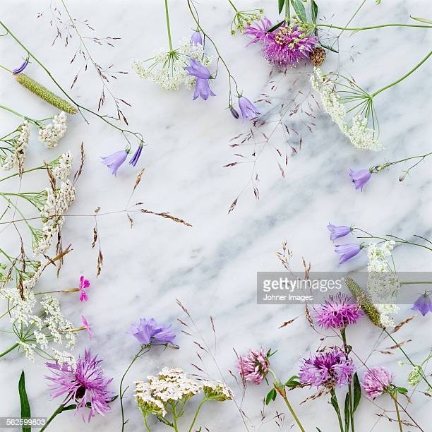 Wildflowers on marble background