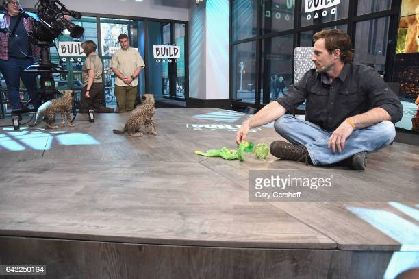 Wildlife expert Boone Smith and a cheeth cub attend Build Series to discuss the series 'Big Cat Week' at Build Studio on February 20 2017 in New York...