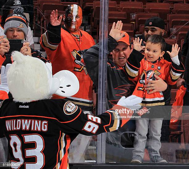 Wildwing waves to the fans following the game between the Anaheim Ducks and the Winnipeg Jets on April 5 2016 at Honda Center in Anaheim California