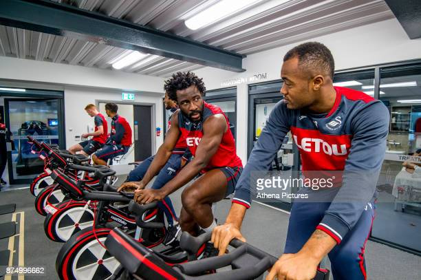 Wilfried Bony and Jordan Ayew exercise on bikes during the Swansea City training session at The Fairwood training Ground on November 16 2017 in...