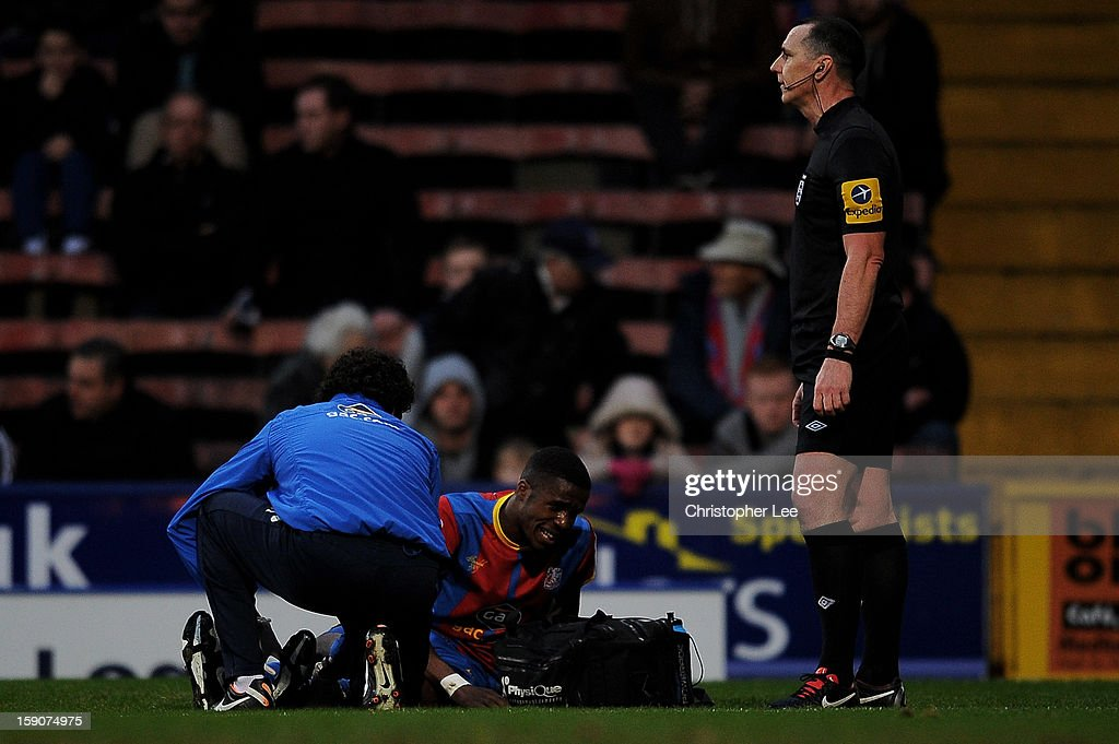 Wilfried Zaha of Crystal Palace receives medical attention during the FA Cup with Budweiser Third Round match between Crystal Palace and Stoke City at Selhurst Park on January 5, 2013 in London, England.