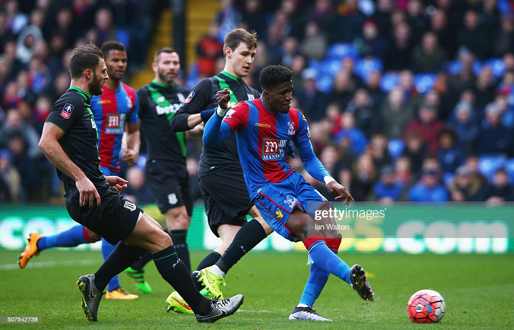 Crystal Palace v Stoke City - The Emirates FA Cup Fourth Round
