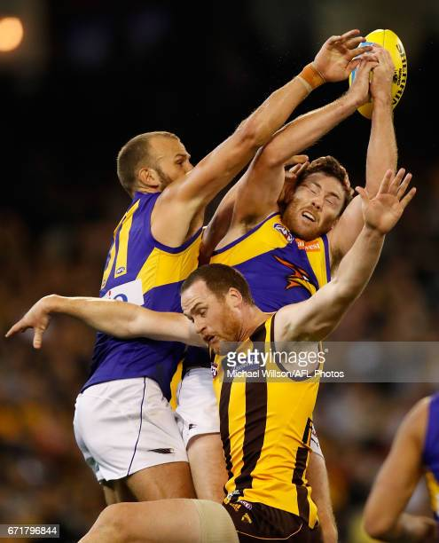 Will Schofield and Jeremy McGovern of the Eagles compete for the ball against Jarryd Roughead of the Hawks during the 2017 AFL round 05 match between...