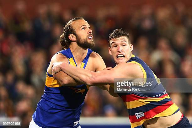 Will Schofield of the Eagles and Josh Jenkins of the Crows compete during the round 23 AFL match between the Adelaide Crows and the West Coast Eagles...
