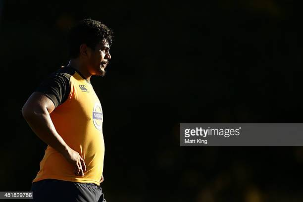 Will Skelton of the Waratahs looks on during a Waratahs Super Rugby training session at Kippax Lake on July 8 2014 in Sydney Australia