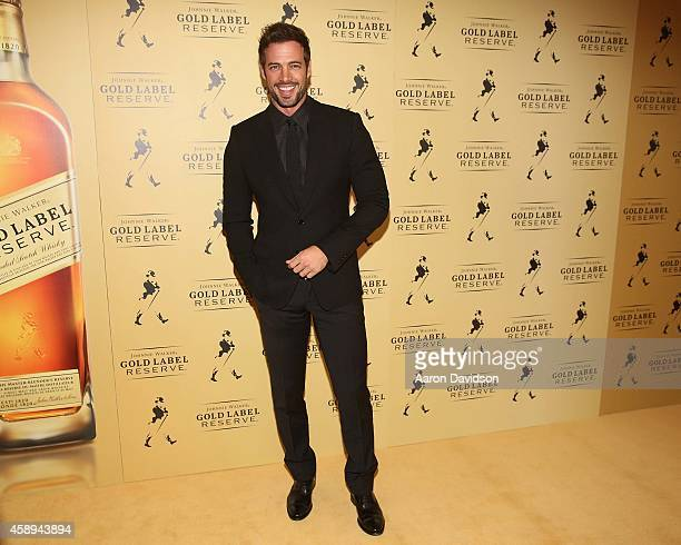 William Levy attends the New Gold Standard of Celebration hosted by Johnnie Walker at The Cruz Building on November 13 2014 in Coconut Grove Florida