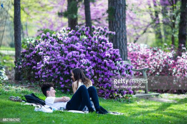 William Sanchesz left and Aenea Kannan 17 right both of Ann Arbor enjoy a sunny day in the entryway lawn of the Nichols Arboretum in Ann Arbor Mich...