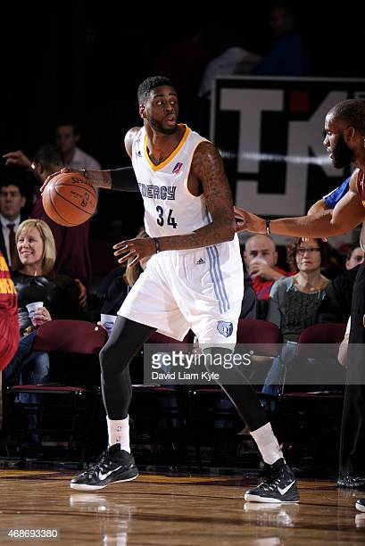 Willie Reed of the Iowa Energy controls the ball against the Canton Charge at the Canton Memorial Civic Center on April 3 2015 in Canton Ohio NOTE TO...