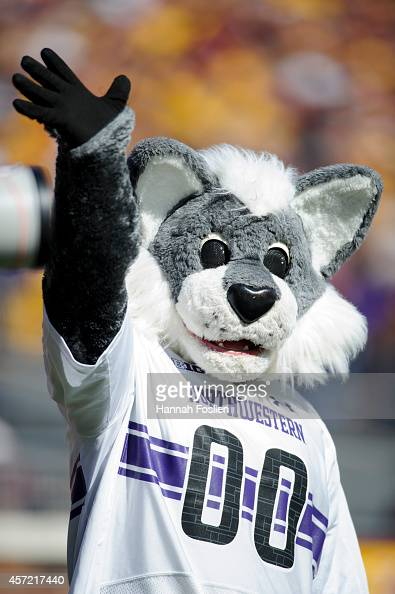 Willie the Wildcat mascot for the Northwestern Wildcats preforms during the game between the Minnesota Golden Gophers and the Northwestern Wildcats...
