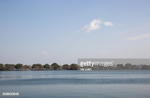 Willow trees on the Su Causeway on the West Lake, Hangzhou,China : Stock Photo