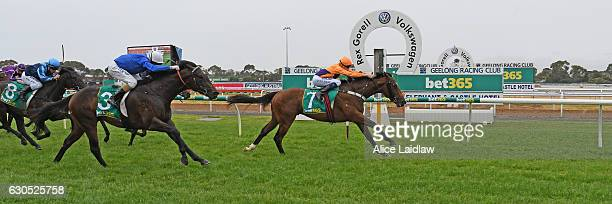 Will's Bid ridden by Callan Murray wins Faullâs Shoes TwoYearsOld Maiden Plate at Geelong Racecourse on December 26 2016 in Geelong Australia