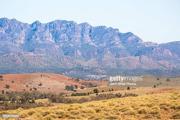 Wilpena Pound. Flinders Ranges