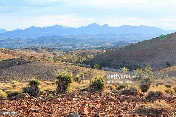 Wilpena Pound. Flinders Ranges. South Australia.