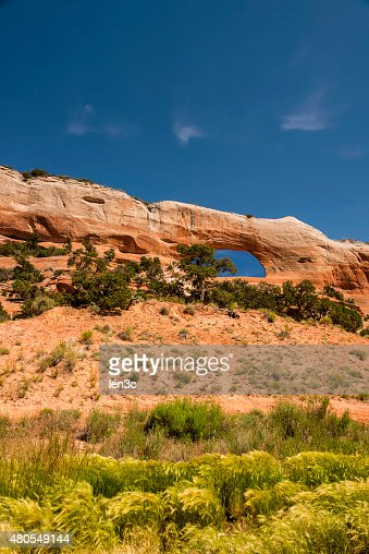 Wilson Arch with Grasses Blowing in the Foreground : Stock Photo