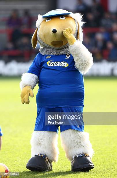 Wimbledon mascot Haydon the Womble looks on prior to the Sky Bet League One match between AFC Wimbledon and Northampton Town at The Cherry Red...