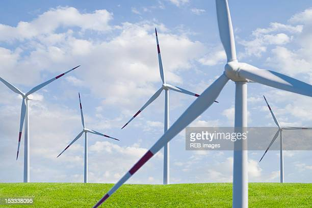 Wind farm in field