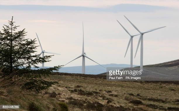 A wind farm near Corky in Co Antrim Almost half Northern Ireland's energy needs could be generated from renewable sources by 2020 it was claimed today
