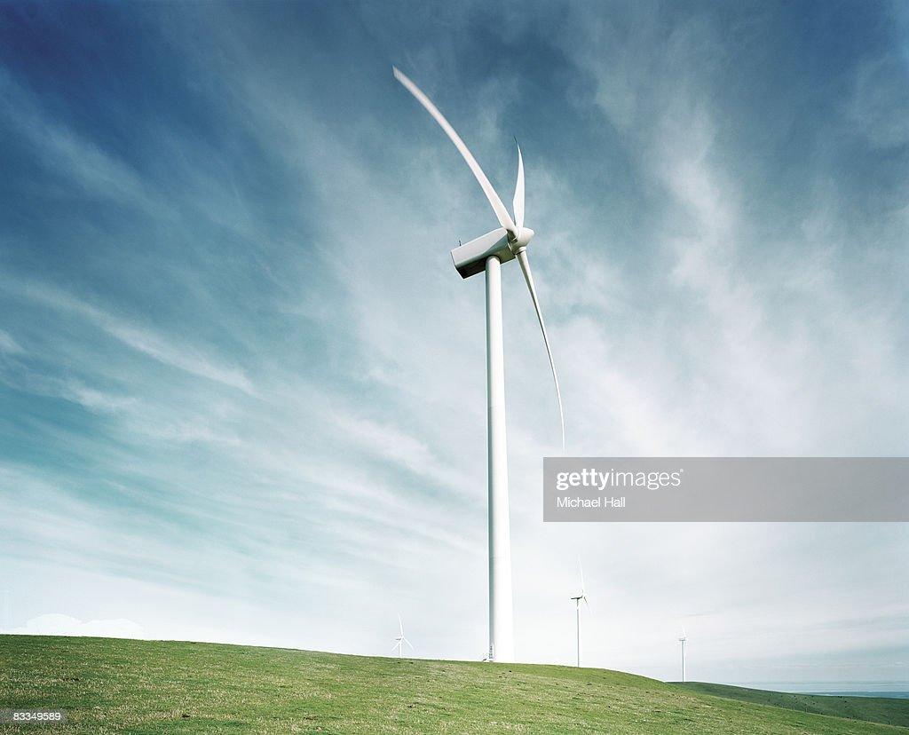 Wind farm : Stock Photo