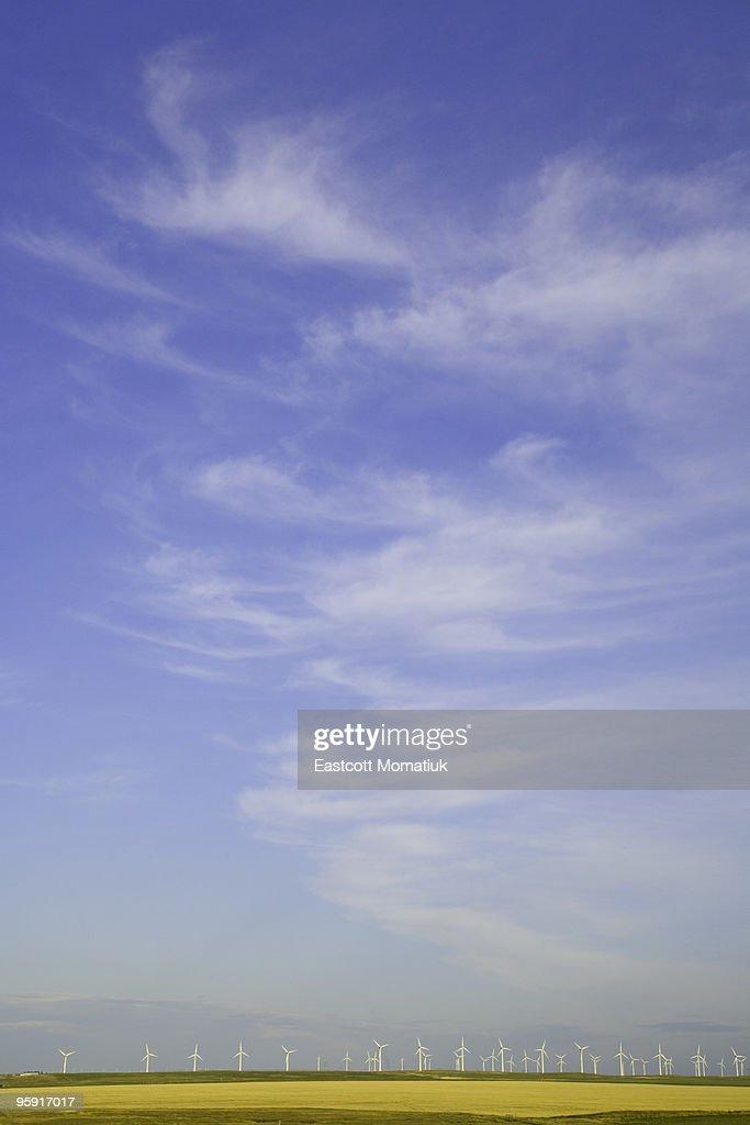 Wind farm turbines in wheat fields, AB, Canada : Stock Photo