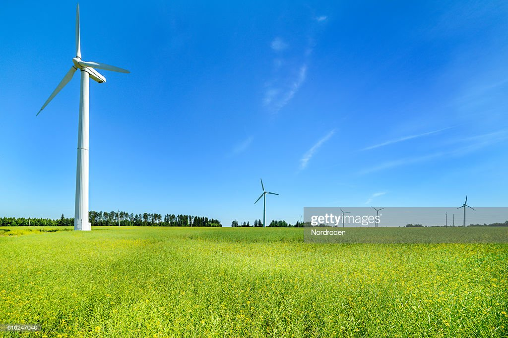 Wind generator in the meadows, on a background of blue : Stock Photo