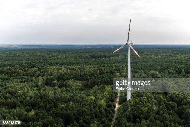 A wind power station in the middle of a forest is pictured on August 04 2017 in Bernsdorf Germany
