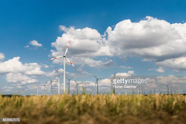 Wind Power Stations on a field are pictured on August 14 2017 in Goldbeck Germany