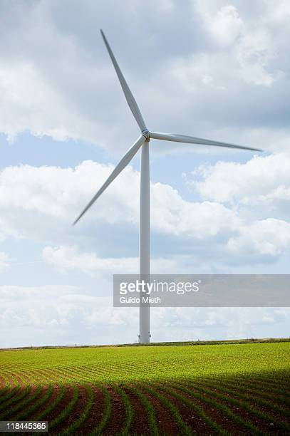 Wind turbine at fresh green field