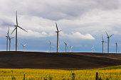 Wind Turbine Farm in the Montezuma Hills outside Rio Vista, California under a stormy sky