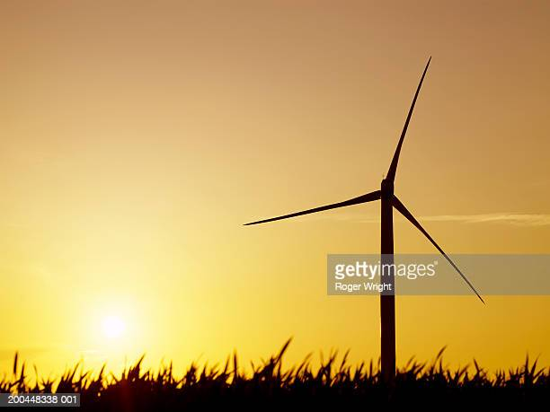 Wind turbine in field at sunset, silhouette, low angle view